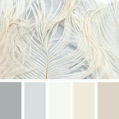 Light Feathers