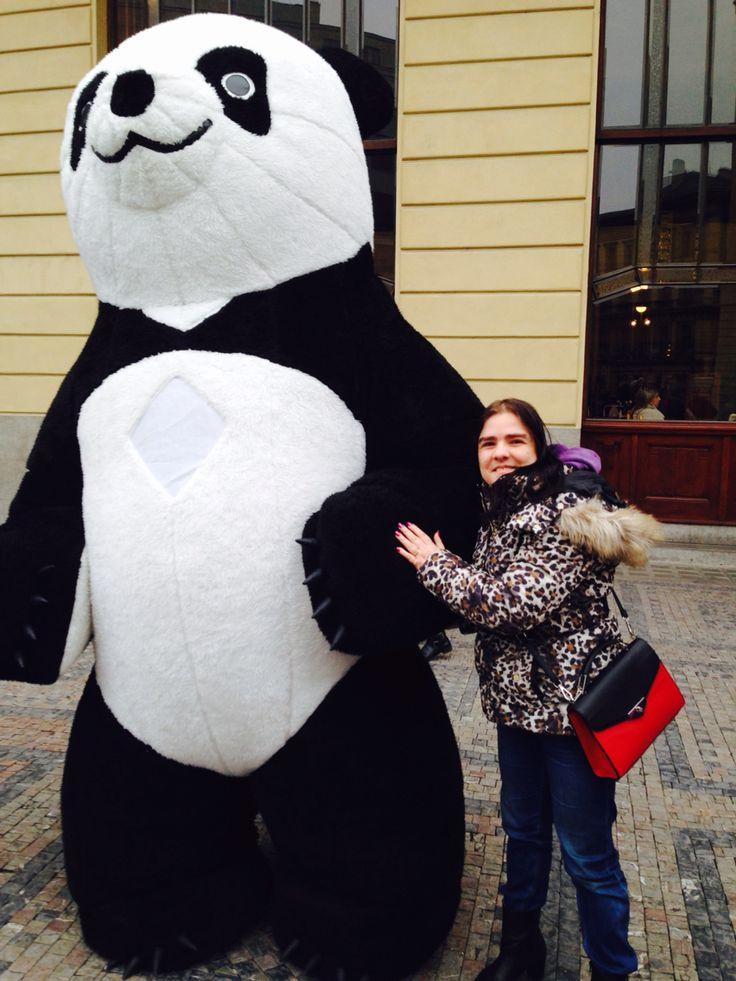 Čau Pane Pando/Hi Panda(9.11.2014)