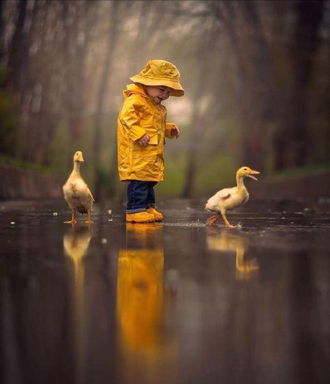 Nur ein paar Enten im Regen … – #Couple #ducks #rain