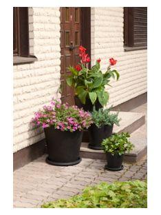 Vielä ehtii laittaa kesäkukkia kauniisiin ruukkuihin. Ruukkuja: https://www.k-rauta.fi/rautakauppa/haku/ulkoruukku?utm_source=K-rauta.fi&utm_medium=Pinterest&utm_campaign=Pibterest_Piha3_290615 #kukkaruukku #ulkoruukku #ruukku ulos #ulkokukat