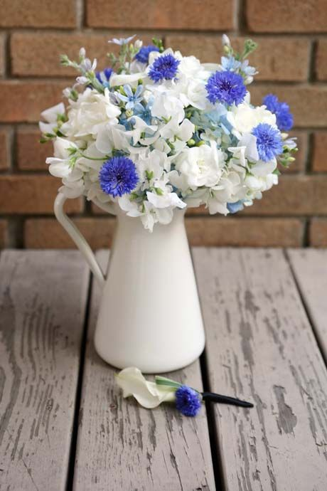 Electric blue cornflowers and white freesias and sweet peas