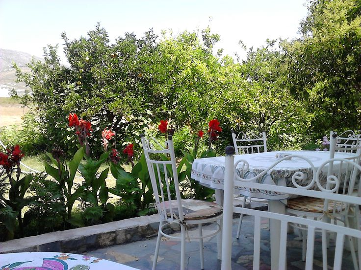 the garden and views to Mt Ainos relaxing at Makis Rooms Katelios