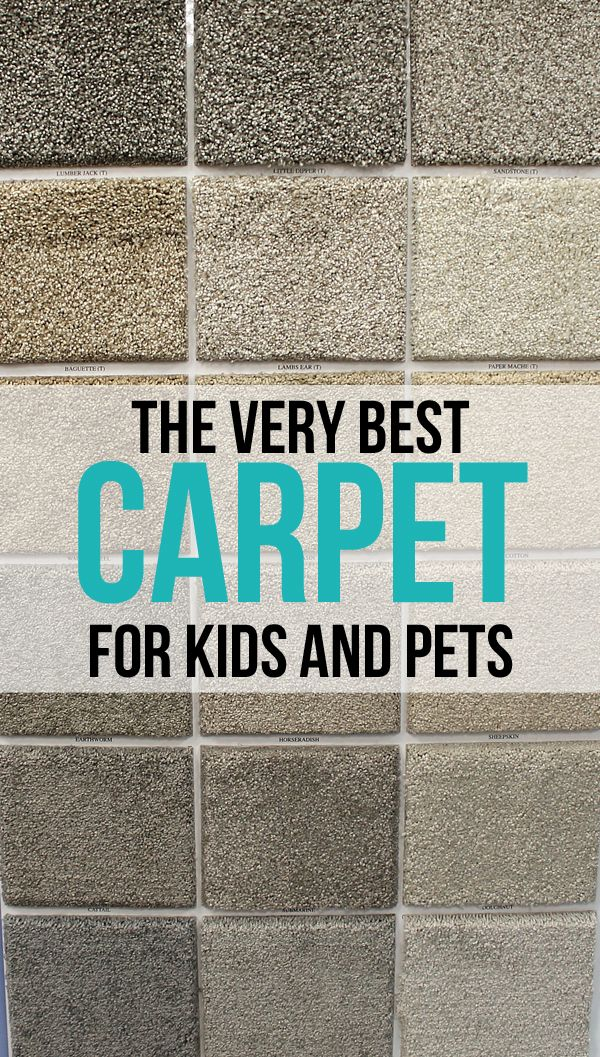 The Craft Patch: The Very Best Carpet for Kids and Pets