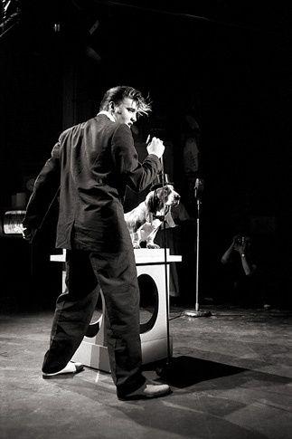 """Alfred Wertheimer Photography ...""""Hound Dog"""" ...Elvis Presley"""
