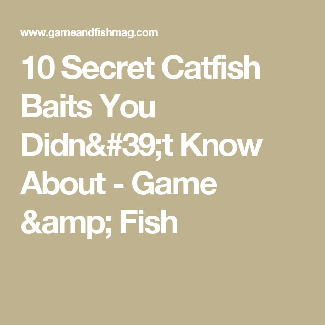 10 Secret Catfish Baits You Didn't Know About - Game & Fish