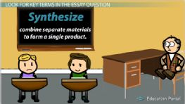 10th Grade English: High School Course - Free Online Video Lessons   Education Portal