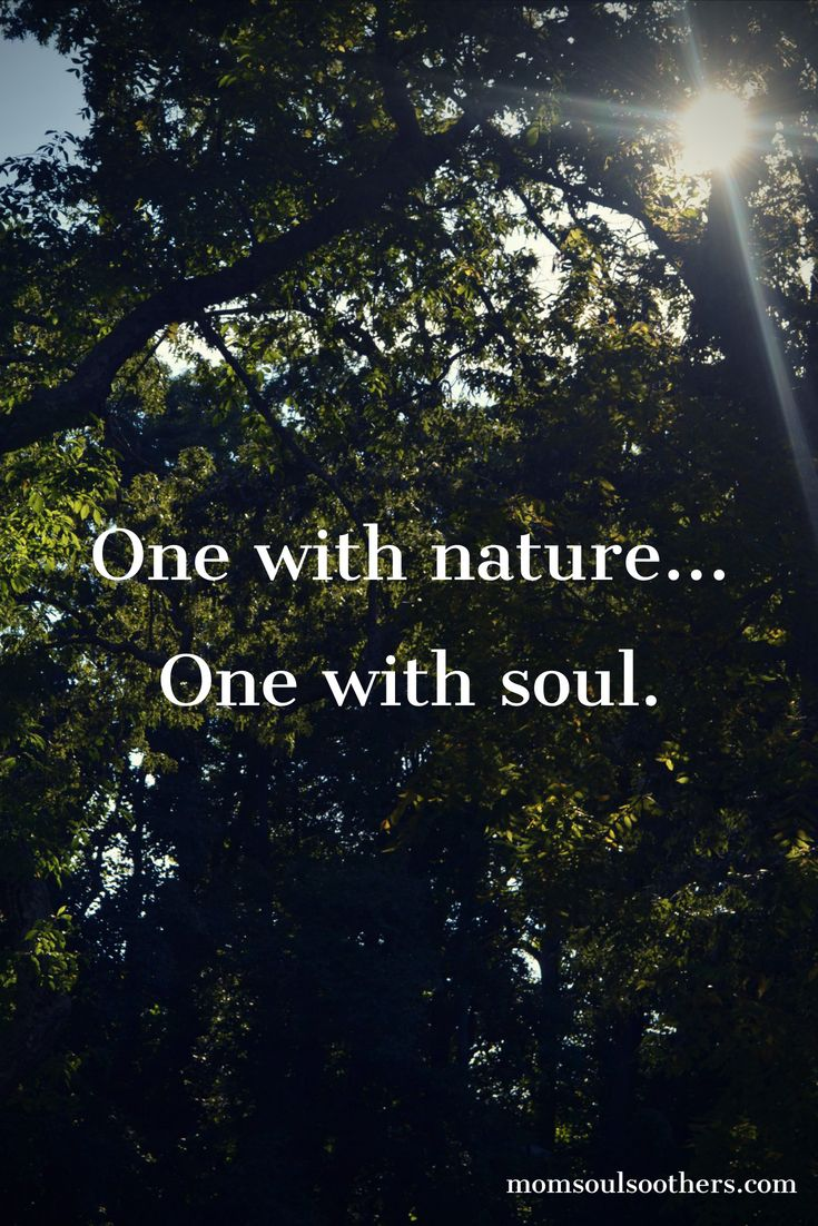 Quotes Tools And Inspiration For Your Soul Nature Quotes Trees Nature Quotes Mother Nature Quotes