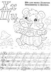 Раскраска Хомяк с цветком
