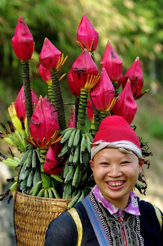 Fiore di banana ^^ http://viaggivietnam.asiatica.com/
