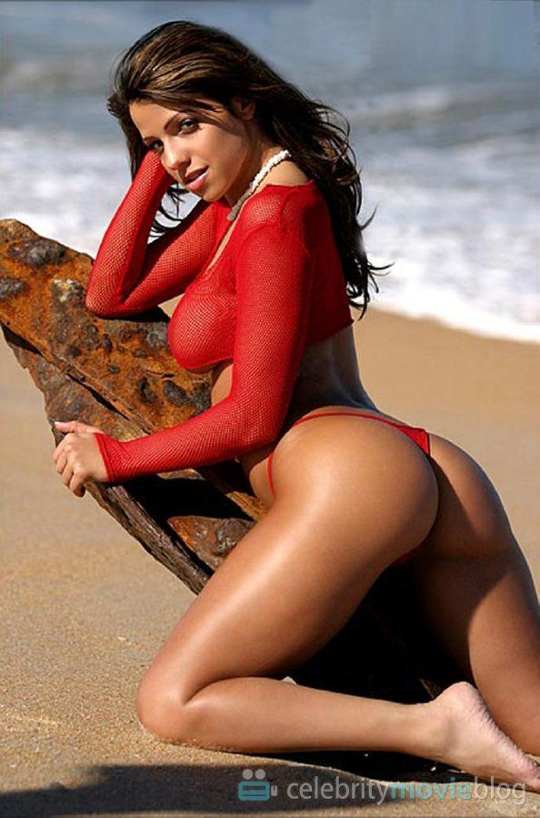 Vida Guerra Nude Profile in Playboy Picture