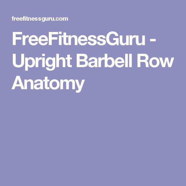 FreeFitnessGuru - Upright Barbell Row Anatomy