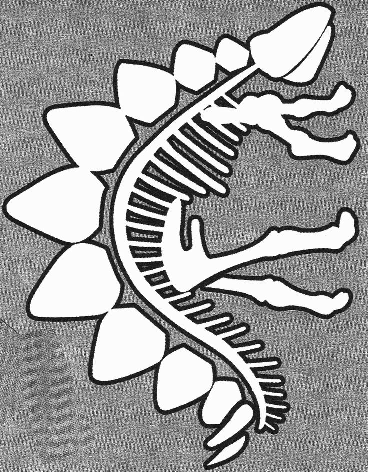 Dinosaur Crafts - stegasaurus skeleton template