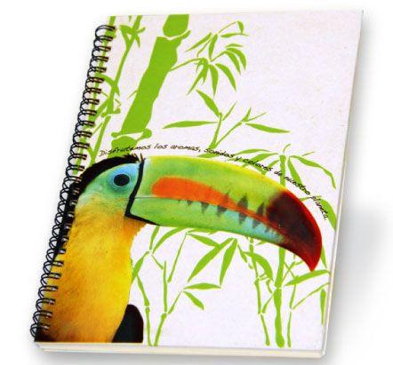 Ecológico Tucán: http://comprasonline.zetta.com/product/cuaderno-ecologico-tucan