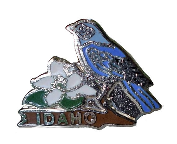 """IDAHO STATE vintage lapel cloisonne enamel pin state flower bird by VintageTrafficUSA  17.00 USD  A vintage IDAHO state pin! Excellent condition. Measures: approx 1"""" 20 years old hard to find vintage high-quality cloisonne lapel/pin. Beautiful die struck metal pin with colored glass enamel filling. Add inspiration to your handbag tie jacket backpack hat or wall. Have some individuality = some flair! -------------------------------------------- SECOND ITEM SHIPS FREE IN USA!!! LOW SHIPPING…"""