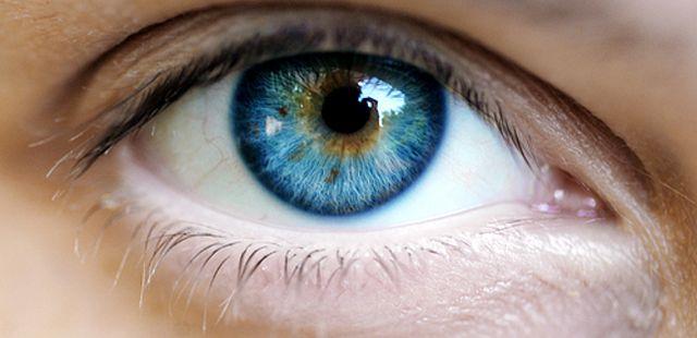 El ojo humano tiene la capacidad de procesar más de 36.000 partes de datos por hora y más de 24 millones de imágenes en el promedio de vida. ¿Qué te parece?