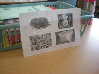 Learning through Inquiry: A Look into Our Grade 3 Classrooms: Early 19th Century Canada - Exploring Social Studies