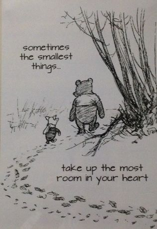 Winnie the Pooh... Love this quote!