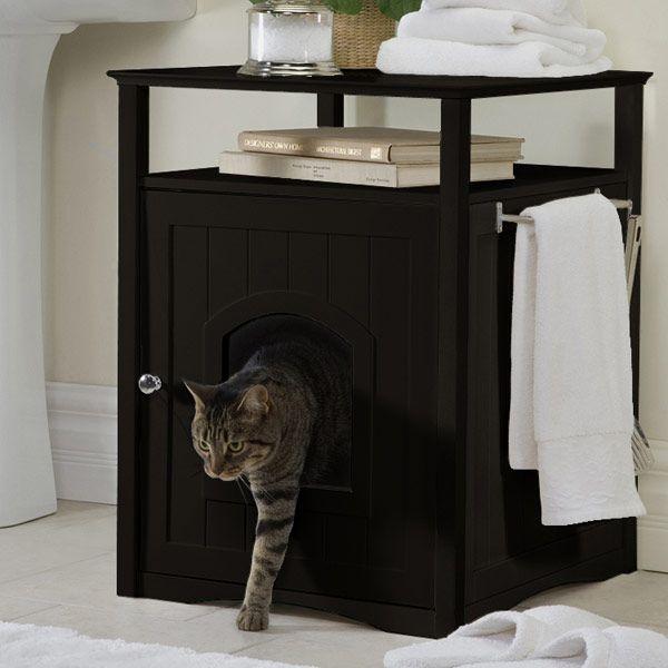 gato mesa