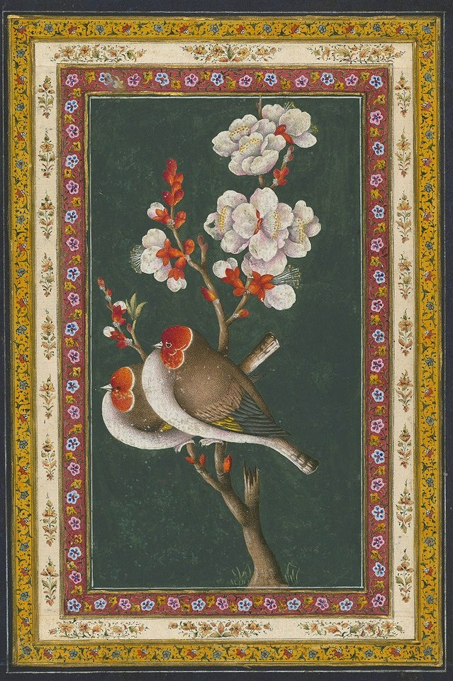 Persian Painting گل و مرغ اواخر زند یا اوایل قاجار Two birds sitting on a flowering branch Label: This painting is attributable to the late Zand or early Qajar period (twelfth century AH / eighteenth CE or thirteenth century AH / nineteenth CE