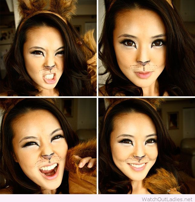Lovely cat makeup idea