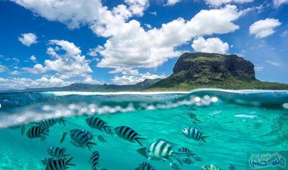 موريشيوس جزيرة تنبض بالحياة ليلا ونهارا Cool Places To Visit Family Holiday Destinations Mauritius