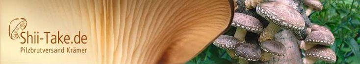 Pilzbrut, Pilzpulver und Nützliches für den Garten