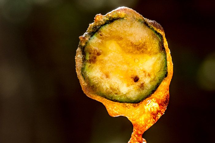 Αποκλειστικο: Ποιο λαδι τηγανισματος πετυχαινει το πιο τραγανο αποτελεσμα