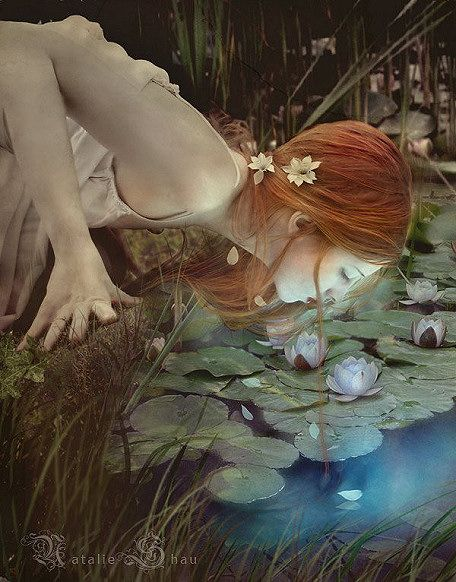 : The Artists, Natalie Pretentious, Digital Art, New Age, Dolls House, Digital Photography, Water Lilies, Walks In, Fairies Tales