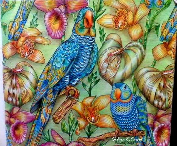 Inspirational Coloring Pages by @silviareginacassol #tropicalwonderland…