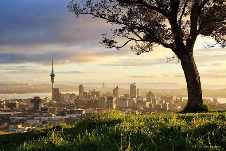 Chris Gin North Island Landscape, Mount Eden, Auckland