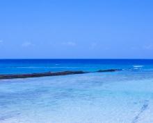 Savannah Beach Hotel Barbados