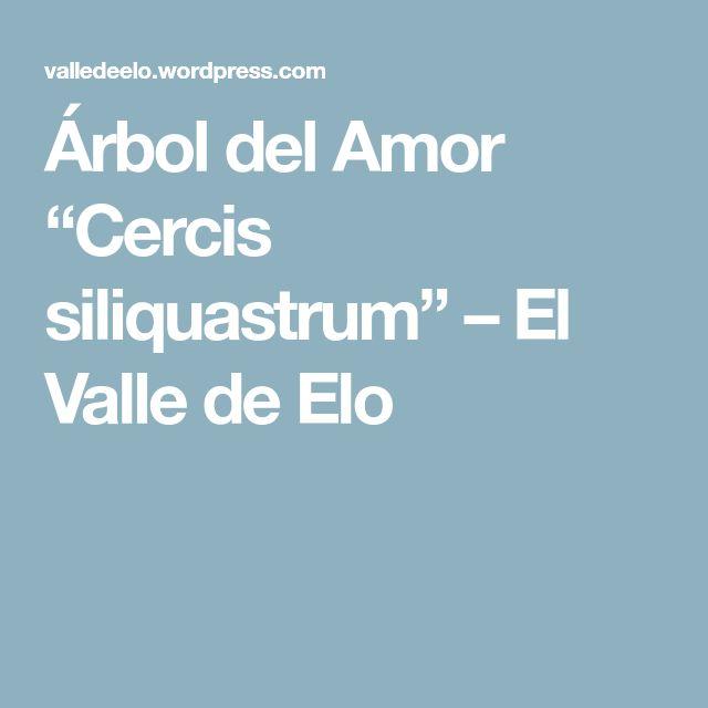 """Árbol del Amor """"Cercis siliquastrum"""" – El Valle de Elo"""