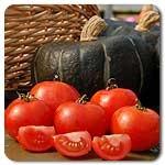 Scotia Tomato