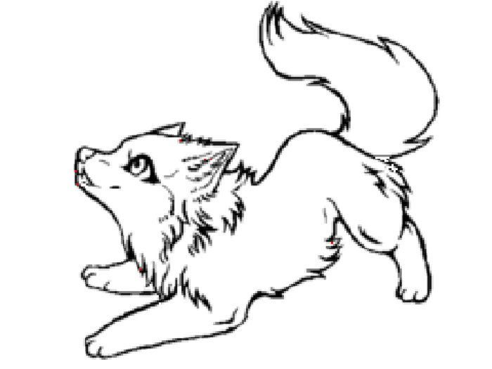 Cute Arctic Wolf Coloring Pages In 2020
