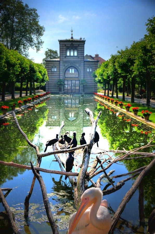 Best Wilhelma Reflecting Garden