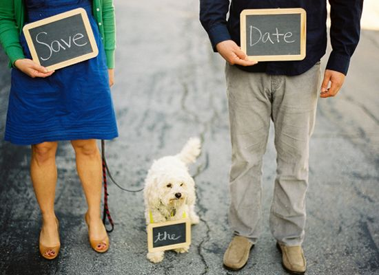 10 ways to include your pets in the wedding