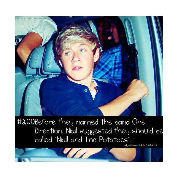 niall horan facts | Tumblr ❤ liked on Polyvore