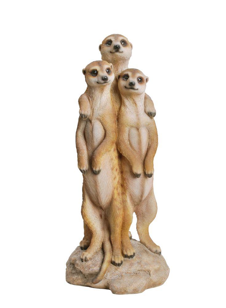 A Loja do Gato Preto | 3 Suricatos #alojadogatopreto