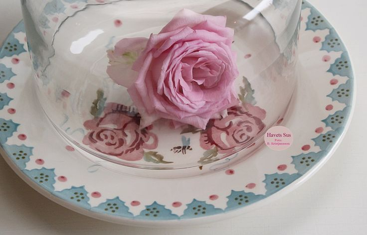 Rose - Emma Bridgewater - Rose and Bee - Havetssus - blomster - flower - flowers