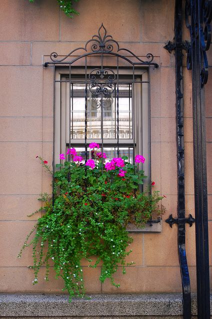 rue Sherbrooke window & flower box, Montreal, Quebec, Canada | by cleofysh, via Flickr