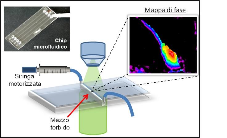 Dentro i materiali torbidi, con il laser  Una tecnica che permette di vedere attraverso i mezzi torbidi sfruttando l'effetto doppler. Applicazioni dalla microfluidica in medicina alla scansione di fondali marini  Leggi l'articolo su Galileo (http://www.galileonet.it/blog_posts/5107b801a5717a306b000112)  Credits immagine: Cnr