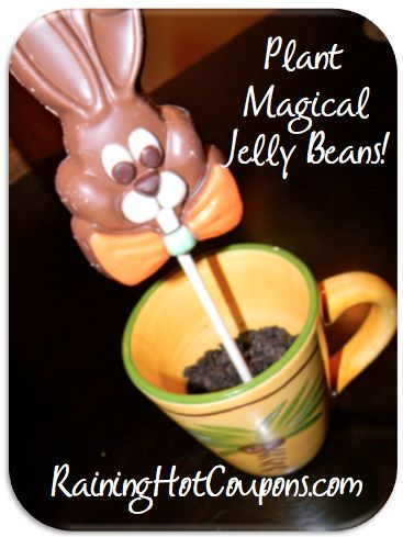 Plant Magical Jelly Beans: Did you know that on Easter Eve you can plant jelly beans and they will actually grow into special lollipops overnight?!