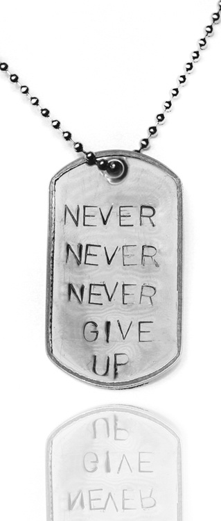 """Stainless Steel """"""""Never Give Up"""""""" 2 Inch Dog Tag - 26 Inch Necklace. Military - Army - Navy - Air Force - Marine Style. Get one of today's hottest accessories with our collection of inspirational dog tag necklaces! No longer just for military men - dog tags have become very popular as a necklace choice  $39.00"""