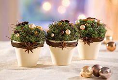 Terrakotta-Töpfe mit weihnachtlicher Deko