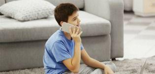Should children be given mobile phones?