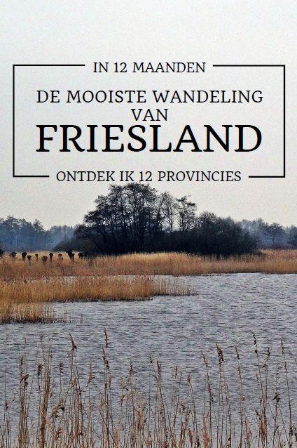 De mooiste wandeling van Friesland volgens wandelweg.nl, ik wandelde hem en heb genoten!