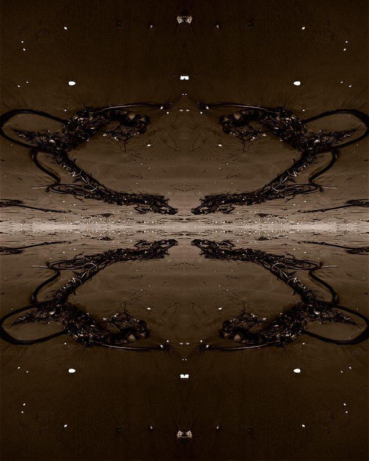 #thornappledreams #thornappleproductions #thornapple #mikeroutliffe #reflections #myth #refraction #entheogenic #composite #fractals #speculativefiction #cyberpunk #futuristic #futurism #avantegarde #contemporaryart #digitalarts  #graphics #biomech #newmediaart #newmediaartists #cyberbetics #artaesthetics #concept #multimedia #transmedia