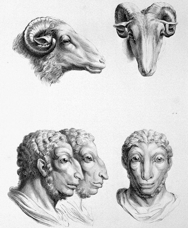 Rola aquela teoria que o ser humano tem um ancestral comum com os macacos e nosso aspecto foi evoluindo muito até chegar no que somos atualmente. O artista francês do século XVII e diretor da Escol…