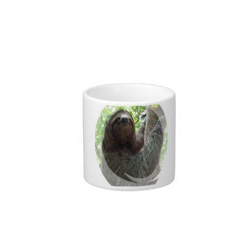 Sloth Photo Design Specialty Mug Espresso Cups