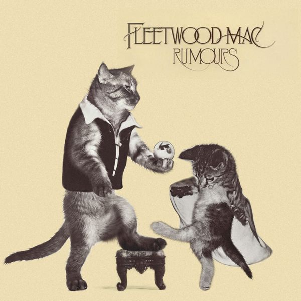 thekittencovers:    Fleetwood Cat - GroomersFleetwoodcat, Album Covers, Fleetwood Meow, Fleetwood Mac, Kittens, Music Videos, Movie Trailers, Cat Rumours, Fleetwood Cat
